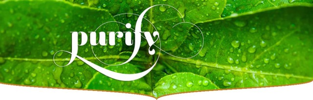 TEAME-Green-Teabags_banner